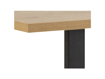 Tisch WALES 160x90x75cm