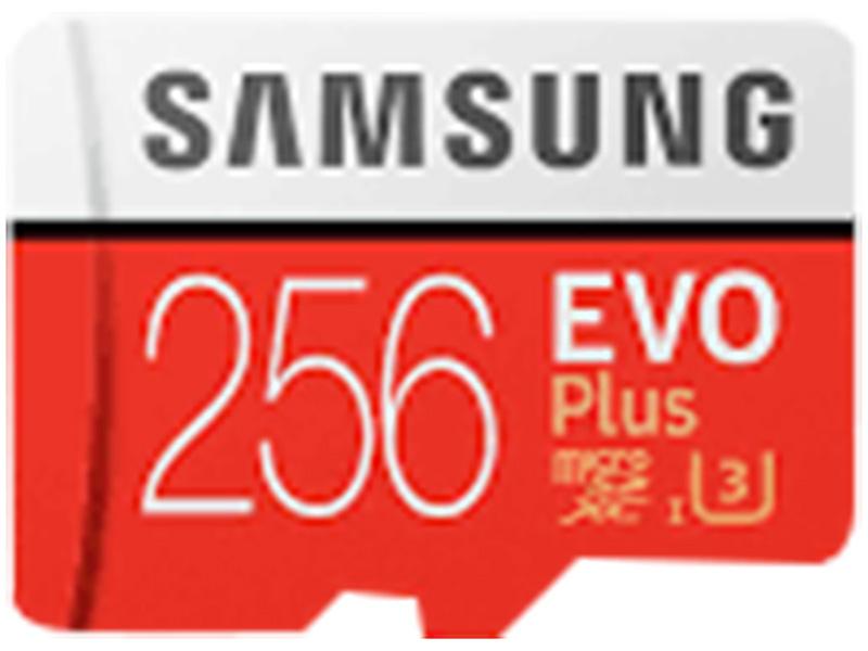 SD-Karte SBS LOGISTIK (SAMSUNG) SAMSUNG 256GB